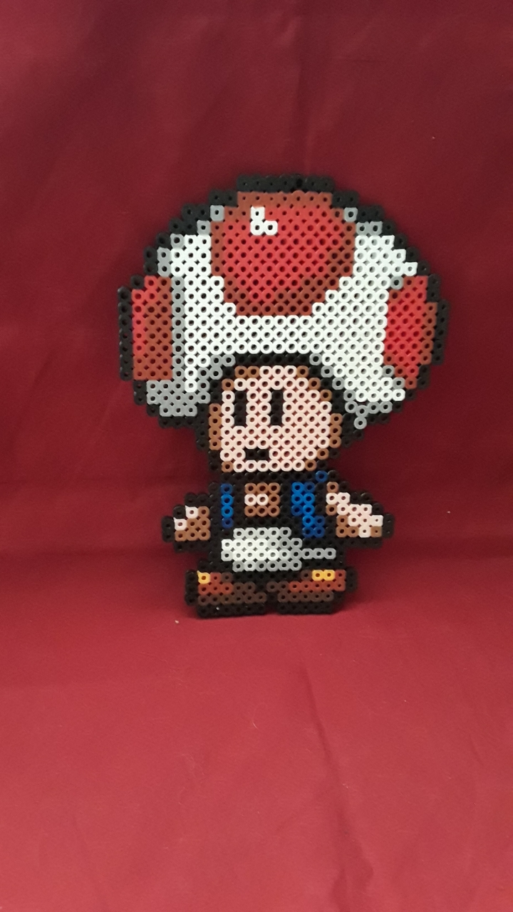 PRL: TOAD WALL HANGING (NEW)