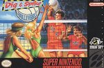 SNES: DIG AND SPIKE VOLLEYBALL (GAME)